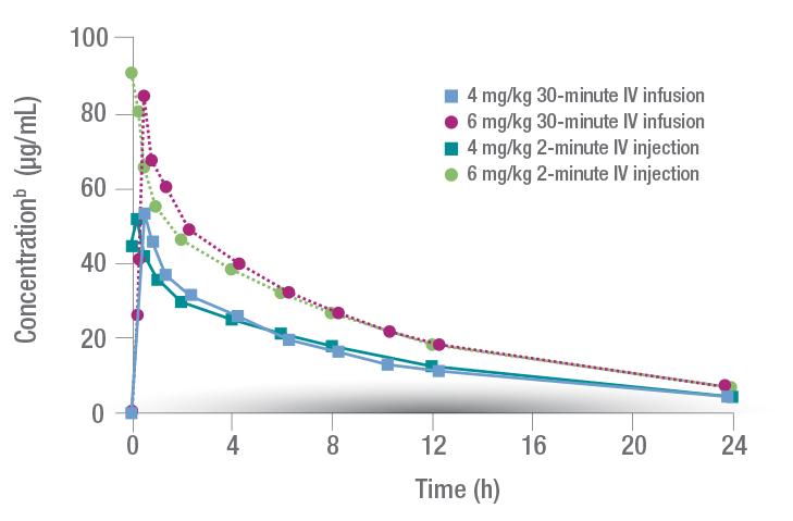 CUBICIN concentration-time curve for IV infusion and injection over 24 hours